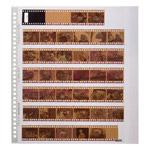 フォトシステムファイル SF-4 フィルムファイル 35mm用 替台紙