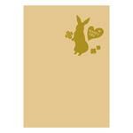 ハクバ 写真台紙ランス ポストカードサイズ 2面(タテ・タテ)